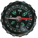 Compass - Magnetic (Set of 30)